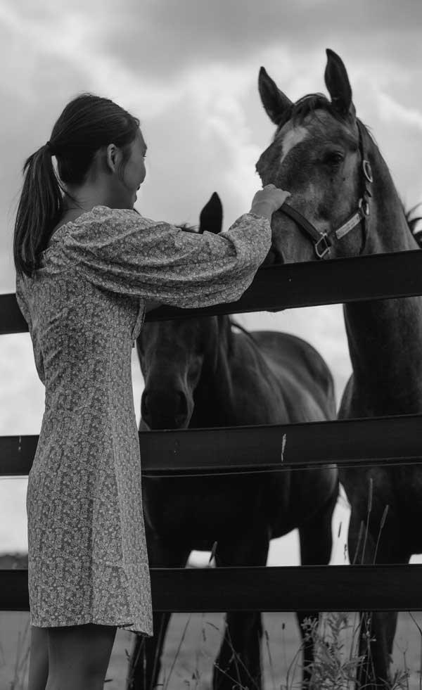arion-coachinghorse-white-black2